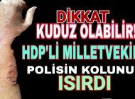 HDP'li Sözde Milletvekilinden Polise İğrenç Saldırı