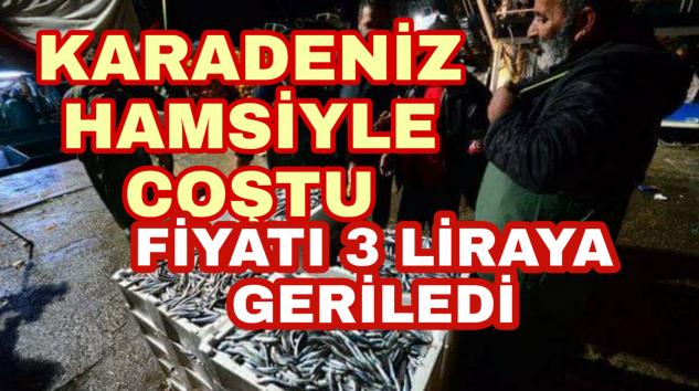 Karadeniz Hamsiyle Coştu Kilosu 3 liraya kadar düştü